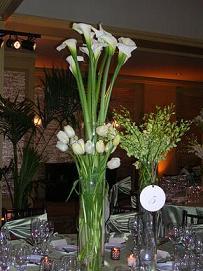 Tall White Calla Lilies in Cerritos CA, The White Lotus Florist