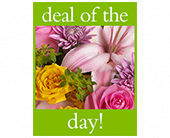 Deal of the Day Bouquet in Elkland PA, The Rainbow Rose