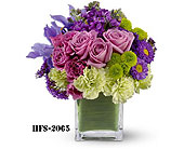 Norwalk in Fairfield CT, Glen Terrace Flowers and Gifts