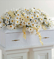 All Daisies Casket Spray in Homer NY, Arnold's Florist & Greenhouses & Gifts