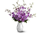 Teleflora's Orchid Reflections in Edmonton AB, Petals For Less Ltd.