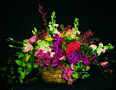Happy Basket in West Palm Beach FL, Extra Touch Flowers