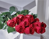 Dozen Premium Long Stem Roses In a Box in Sayville NY, Sayville Flowers Inc