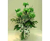 6 Green Carnations Arranged in Utica NY, Chester's Flower Shop And Greenhouses