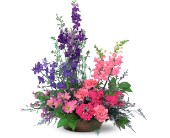 Garden Fresh Blooms in Lansdale PA, Genuardi Florist