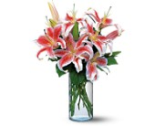 Lovely Lilies in Elkland PA, The Rainbow Rose