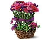 Basket of Smiles in Manalapan NJ, Rosie Posies