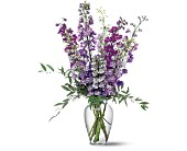 Delphinium Dreams in DeKalb IL, Glidden Campus Florist & Greenhouse
