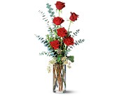 Expression of Love in Mooresville NC, All Occasions Florist & Boutique
