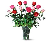 A Dozen Multi-Colored Roses in Chambersburg PA, All Occasion Florist