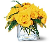 Yellow Rose Bravo! in Etobicoke ON, Flower Girl Florist