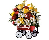 Teleflora's Baby's First Wagon - Boy in Lynchburg VA, Kathryn's Flower & Gift Shop