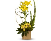 Teleflora's Bamboo Tropics in Fort Worth TX, Greenwood Florist & Gifts