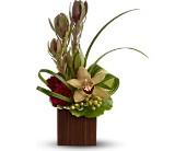 Teleflora's Bamboo Eden in Bothell WA, The Bothell Florist