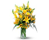 Burst of Yellow in Derry NH, Backmann Florist