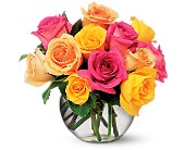 Multi-Colored Roses in Etobicoke ON, Flower Girl Florist