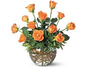 A Dozen Orange Roses in Niagara Falls NY, Evergreen Floral