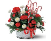 Candy Cane Basket in Georgina ON, Keswick Flowers & Gifts