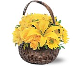 Yellow Flower Basket in San Jose CA, Rosies & Posies Downtown