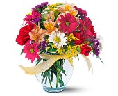 Joyful and Thrilling in San Clemente CA, Beach City Florist