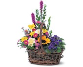 Basket of Glory in Watertown NY, Sherwood Florist