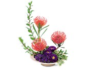 Protea Paradise in Ajax ON, Adrienne's Flowers And Gifts
