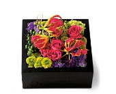 Pav� Texture Square in Hollywood FL, Al's Florist & Gifts