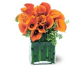 Bronze Callas in San Clemente CA, Beach City Florist