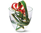 Gloriosa Under Glass in Denville NJ, Flowers by CandleLite