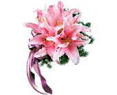 Oriental Lilies Nosegay in London, Ontario, Lovebird Flowers Inc