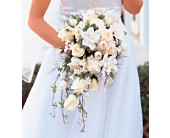White Cascade Bridal Bouquet in Fond Du Lac, Wisconsin, Haentze Floral Co