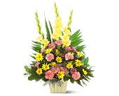 Warm Thoughts Arrangement in North Miami FL, Greynolds Flower Shop