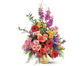 Colorful Comfort in Burlington NJ, Stein Your Florist