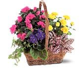 Blooming Garden Basket in Abington MA, The Hutcheon's Flower Co, Inc.