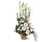 White Impressions in Largo FL, Rose Garden Florist