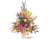 Spring Hope Arrangement in Oklahoma City OK, Capitol Hill Florist and Gifts