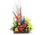 Sunshine Basket in Hilton NY, Justice Flower Shop