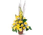 Brighter Blessings Arrangement in Broomall PA, Leary's Florist