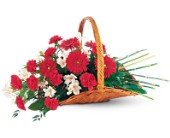 Basket of Comfort in St. Louis MO, Walter Knoll Florist