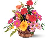Vibrant Basket Arrangement in San Clemente CA, Beach City Florist