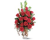Rose Radiance in Burlington NJ, Stein Your Florist