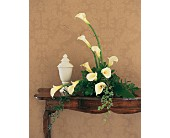 White Expressions in Woodbridge VA, Lake Ridge Florist