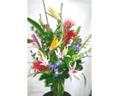 Tropicals in Katy TX, Kay-Tee Florist on Mason Road
