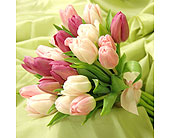 Spring Sensation in Fort Wayne, Indiana, Flowers Of Canterbury, Inc.