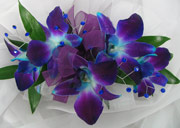 BLUE/PURPLE DENDROBIAN ORCHID CORSAGE W/ GEMS in Ossining NY, Rubrums Florist Ltd.