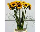Catch the Sun Bouquet in Lake Forest CA, Cheers Floral Creations