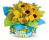 Teleflora's Sunny Birthday Present in White Stone VA, Country Cottage