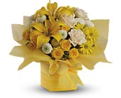 Teleflora's Sunshine Surprise in Vancouver BC, Downtown Florist