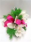 Cymbidium Orchid Wrist Corsage in Belleville ON, Live, Love and Laugh Flowers, Antiques and Gifts