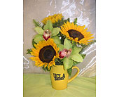 UCLA Mug O''Sunshine in West Los Angeles CA, Westwood Flower Garden